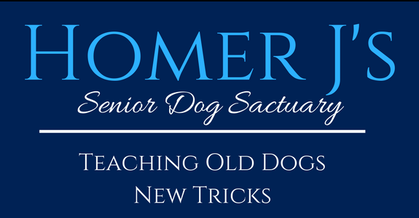 Homer J's Senior Dog Sanctuary
